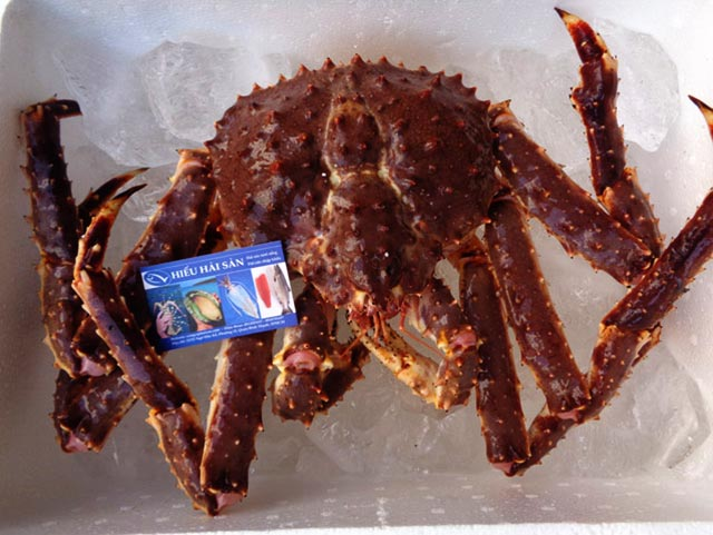cua-alaska-crab-king