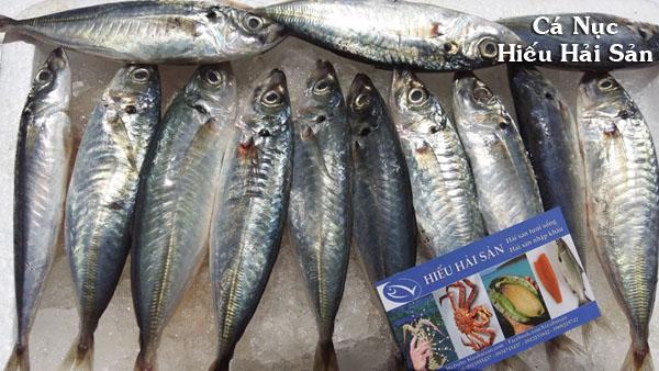Cá Nục