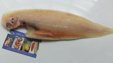 Cá Lưỡi Trâu Một Nắng