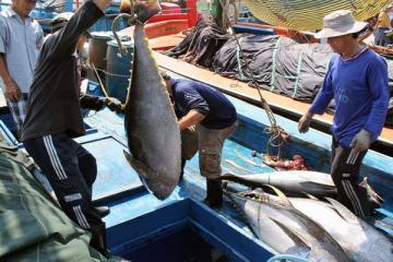 Năm 2018, hải sản xuất nhập khẩu đặt những mục tiêu nào