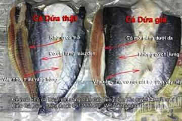 Cách nhận biết khô cá dứa một nắng